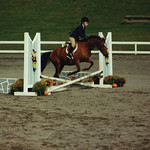 "Horses : Casey started riding before the age of 10 and began taking lessons at Greylyn Farm in Malvern with her friend and neighbor, Rachael Pacifico. She quickly fell in love with it and began competing in shows through the Chester County Horse Show Ass'n., initially using the Greylyn Farm horses. She then progressed to leasing her first horse, ""Diamond"", and then became the proud owner of ""Mr. Handsome"" at the age of 13. She continued to compete, but had less time to do so as she became so involved with her many high school activities. Casey agreed to the sale of Mr. Handsome when she was a college freshman since she knew that it was best  for her horse that he be ridden regularly. Casey and her mom and dad took several riding vacations in Va., Casey's last one with mom during her spring break freshman year to Lantern Lane Farm. Casey last took riding lessons during the summer of 08' at Hidden Acres Farm, Ridley Creek State Park, Pa. She was attempting to see if she could fit some lessons in during the summer of 09' since riding was truly in her blood."